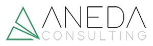 AnedaConsulting-Logo-300x91
